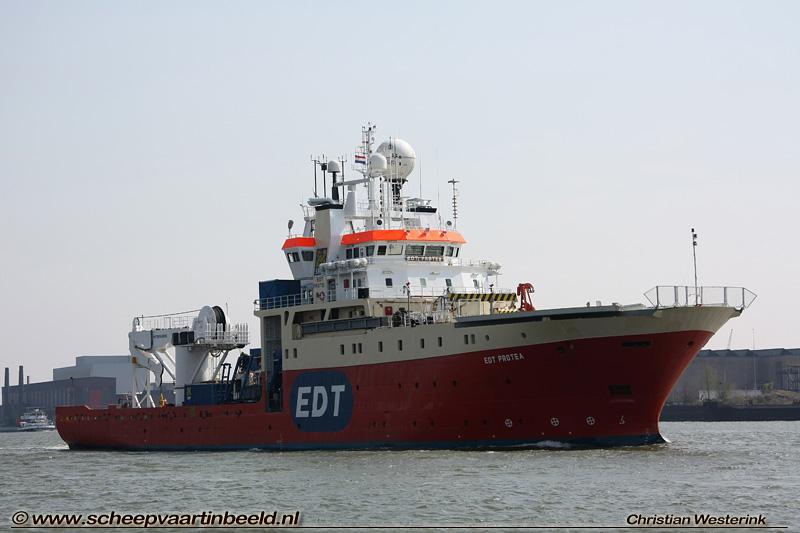 edt-protea